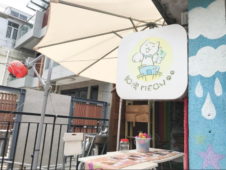 貓cafe